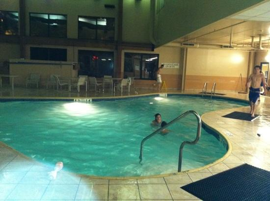 Sheraton Bucks County Hotel: pool