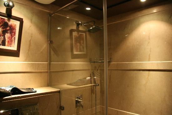 Hotel Africa Avenue: Shower