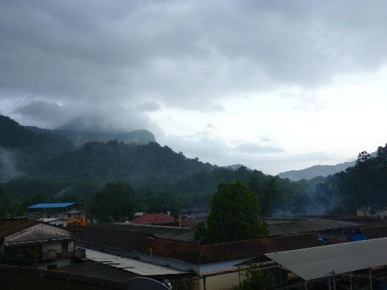 Kollur, India: View of mookabika temple from the hotel roof