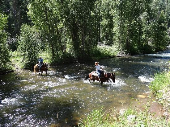 Colorado Trails Ranch: Trails and Horses were terrific and beautiful!