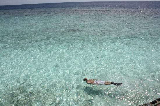 beautiful shallow ocean water great for snorkling