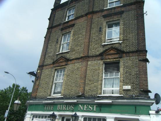Photo of The Birds Nest Youth Hostel London