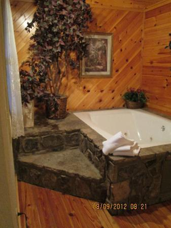Mountain Rentals of Gatlinburg: part of the bedroom