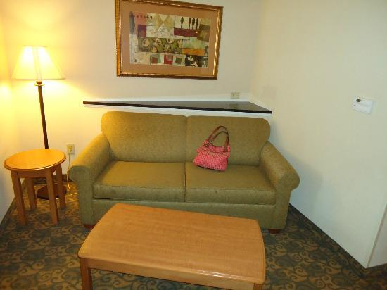 Comfort Suites Valdosta: Pull out sofa...Notice the stains...