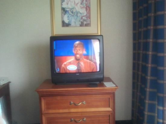 Holiday Inn Charlotte-University Place: Fat Back TV!