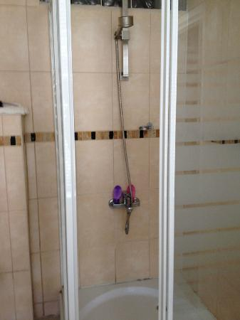 Bayan Guesthouse: Shower.  Clean, new, hand held shower.