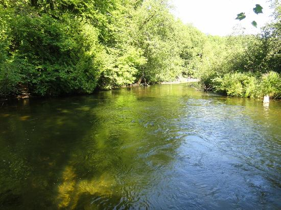 Whispering Waters: The river that runs through the property