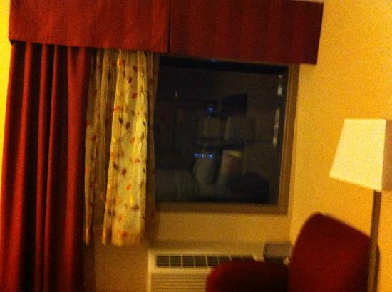 Holiday Inn Hotel Summit County: Our view of... nothing.