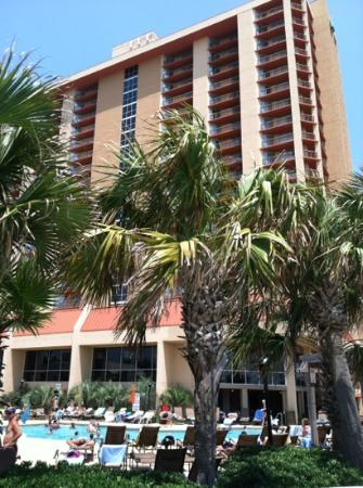 Kingston Plantation Condos: embassy suites