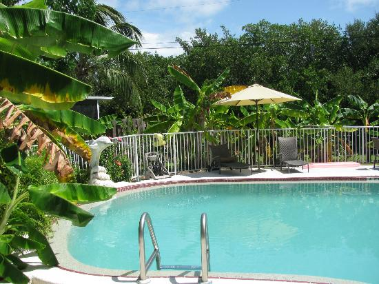 Conch Key Cottages: Pool