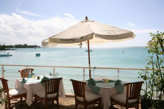 RedCat Beach Lounge - Sea Lovers Restaurant