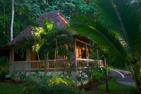 Bosque del Cabo Rainforest Lodge