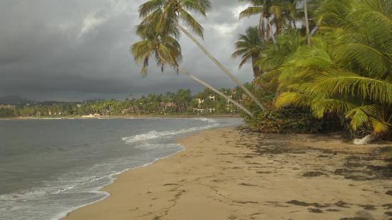 Beach Area Picture of Humacao Puerto Rico TripAdvisor