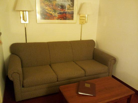 Comfort Suites Rochester: Pull out couch - soft and comfy.