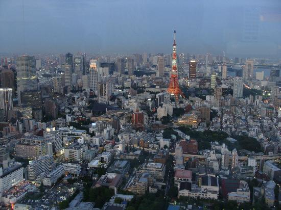 View towards Tokyo Tower - Picture of Tokyo City View Observation Deck (Roppo...