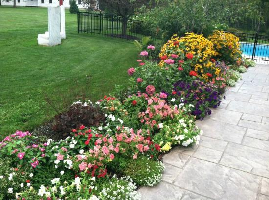 The Inn at Manchester: Flower garden to the pool