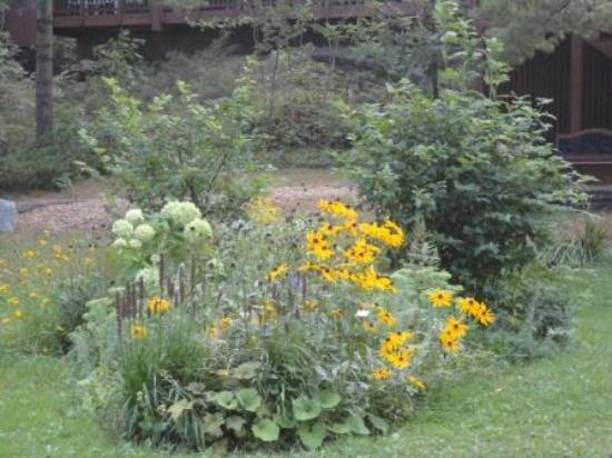 Westwind Inn on the Lake: The Grounds