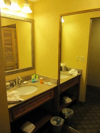 Radisson Hotel Providence Airport: outside sink