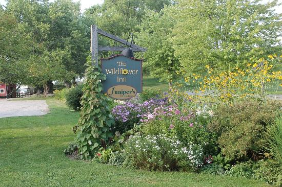 Wildflower Inn: Grounds of Inn