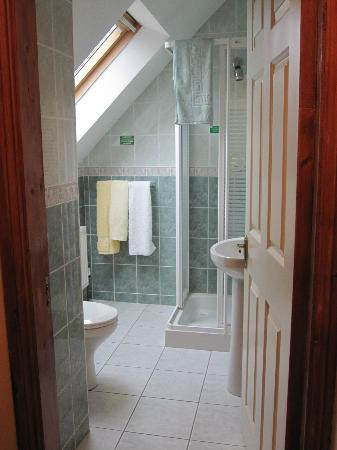 Ashfield Bed & Breakfast: Clean Bathroom with hot shower