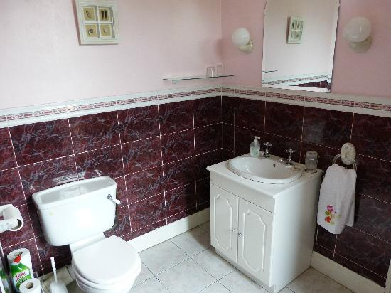Adare Bed & Breakfast: The bathroom ensuite