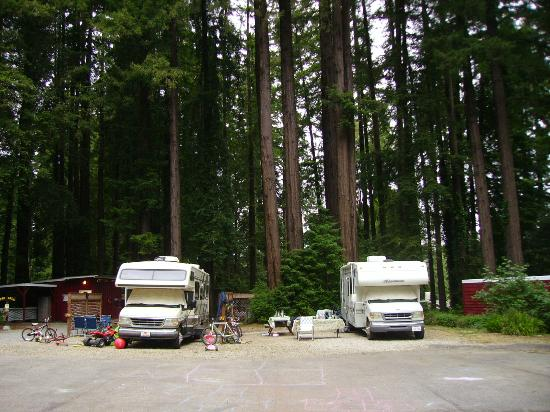 ‪Santa Cruz Redwoods RV Resort‬