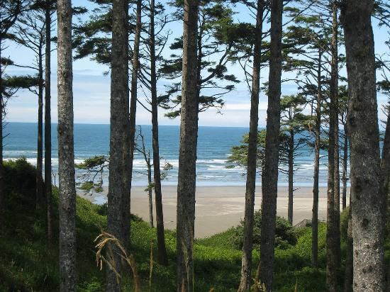 Seabrook Cottage Rentals: Beautiful Scenic Views