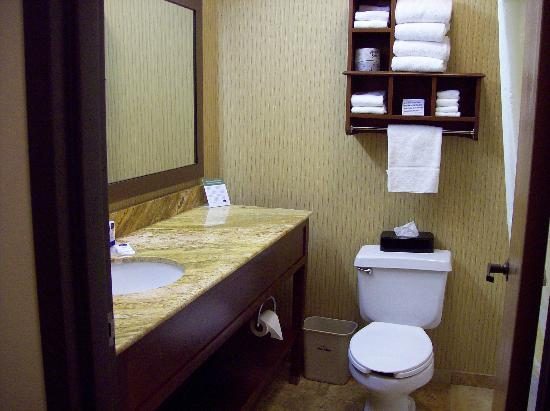 AmericInn Kalamazoo: Granite Counters in Bathroom