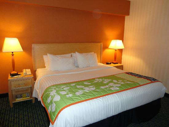 Fairfield Inn and Suites Belleville: King bedroom in room 101, very comfortable bed