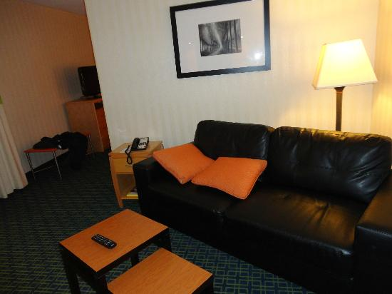 Fairfield Inn and Suites Belleville: Living room couch room 101