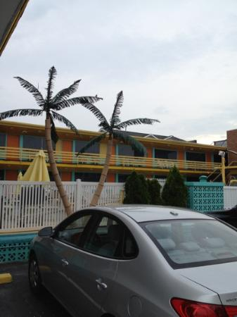 Eden Roc Motel: Front of Motel