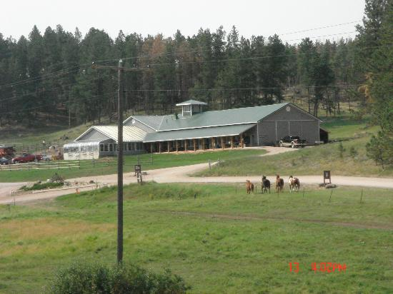 High Country Guest Ranch: horses again passing towards the stalls