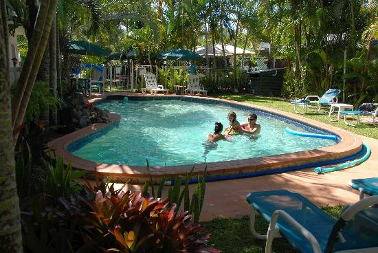 Silvester Palms Holiday Apartments: Lush tropical pool
