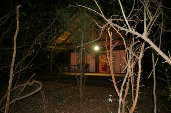 Leopard Walk Lodge: night view from outside
