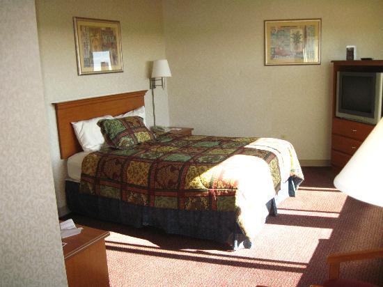 Quinault Sweet Grass Hotel: Room view In