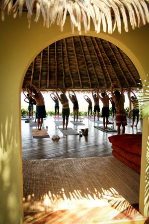 Costa Rica Yoga Spa: yoga in session