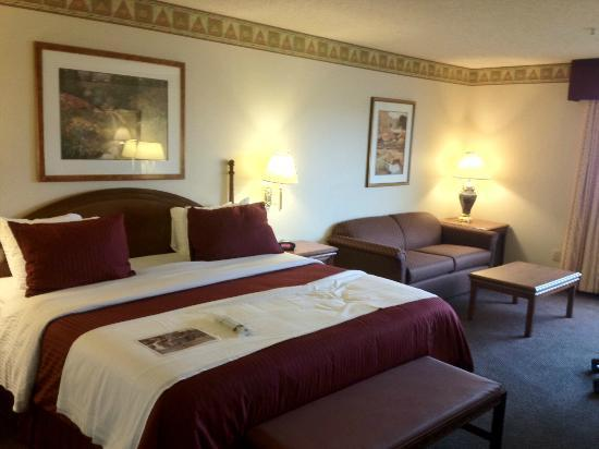 BEST WESTERN PLUS Gold Country Inn: Bed and Sofa