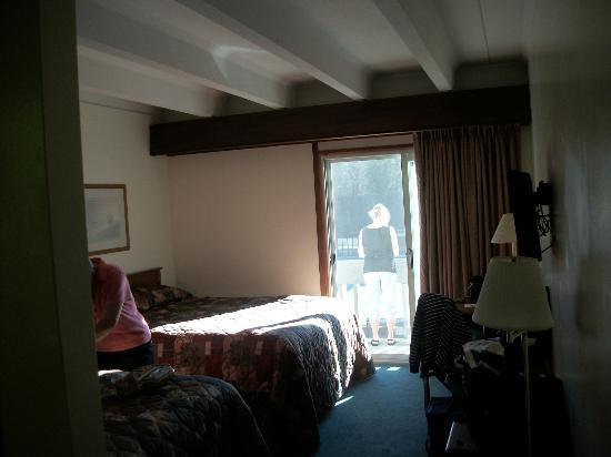 Banff Voyager Inn: grande chambre (2 lits doubles)