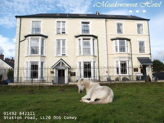 Photo of The Meadowsweet Hotel Llanrwst