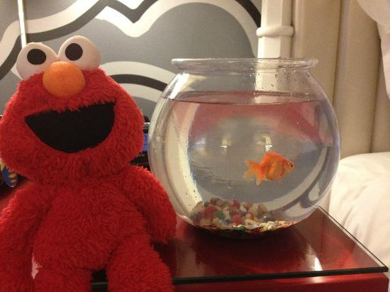 Hotel Monaco Seattle - a Kimpton Hotel: Goldfish in room when requested