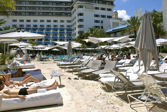 Carlton Hotel Miami South Beach Tripadvisor