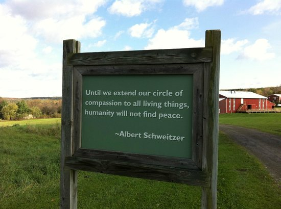 Farm Sanctuary:                   Sign