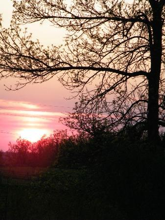 Pinehurst Manor: A gorgeuos sunset in May..