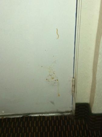 Travelodge Bangor: Inside of the door