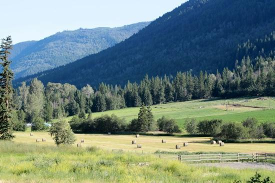 Tod Mountain Ranch: View from lodge patio