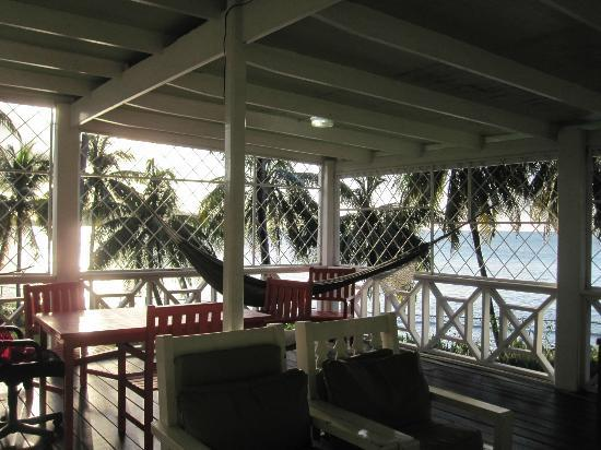 Boiled Frog Guesthouse: The gorgeous patio where you can lazy, chill, email, read, or do anything your sweetness desires