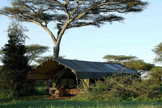 Serengeti Safari Camp: Traditional safari tents with as light a footprint as possible without compromising on comfort