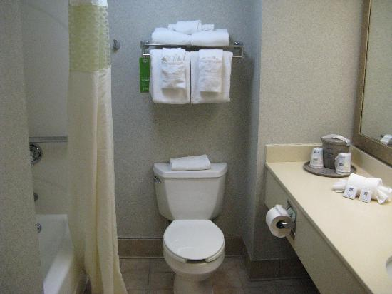 Hampton Inn Secaucus-Meadowlands: Bathroom