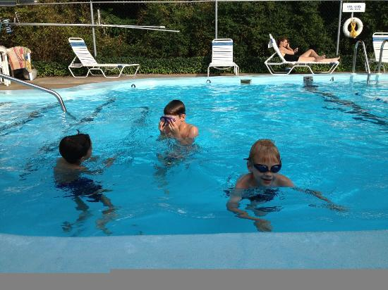 Olde Tavern Motel & Inn : Our boys enjoying the beautiful pool