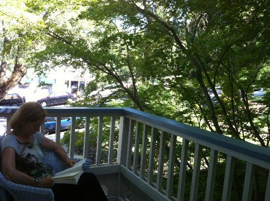 The Winchester Inn: reading on the terrace, amongst the trees